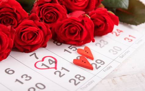 Valentine's Day Flower Buying Guide