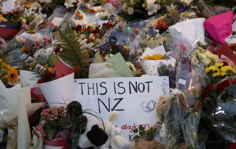New Zealand Shooter Kills 50 in Attack on Mosques