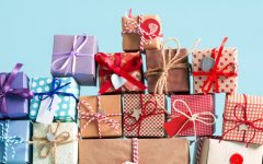 Top 10 Gift Ideas for the Holiday Season