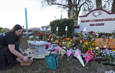 One of many memorials to the lives lost in the mass shooting that took place at Marjory Stoneman Douglas High School. [Photo credit: NPR]
