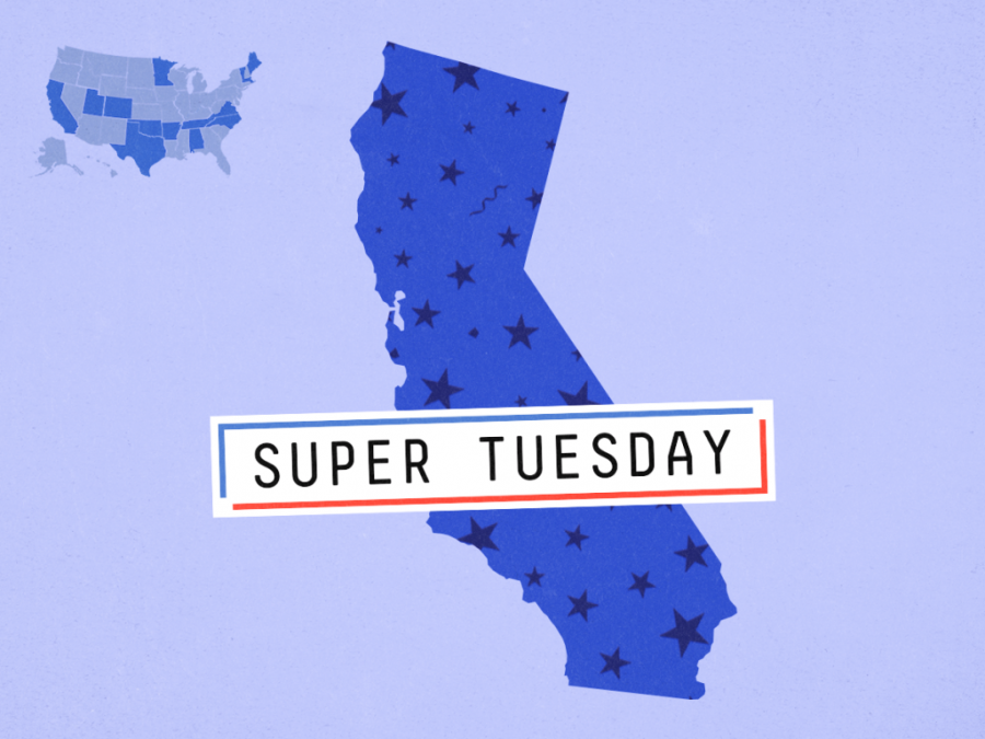 Super Tuesday Narrows the Democratic Party Nominee Competition