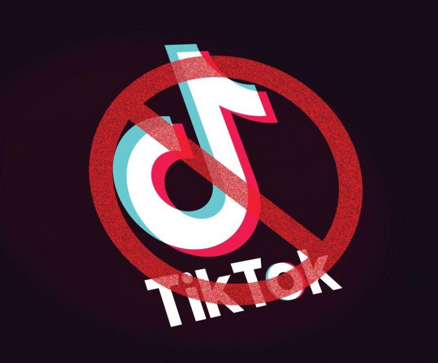 Tik Tok Ban: Protecting Americans or Trump's Heart?